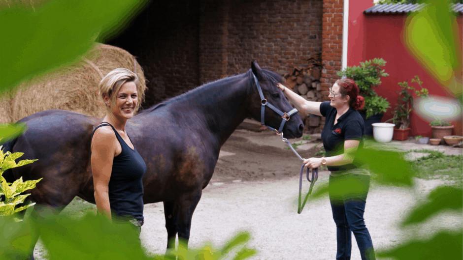Horse-Assisted-Training fuer Ausbilder*innen